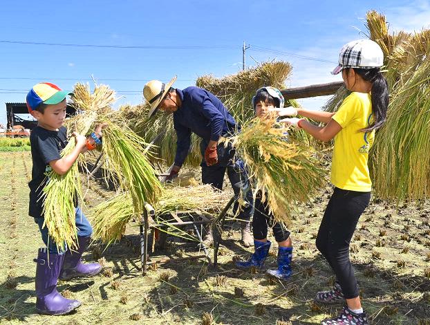 AgVenture Labが提供する稲刈り体験に参加する子供たち
