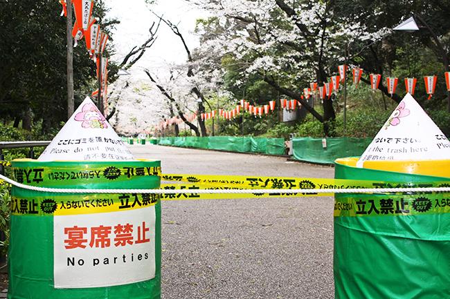 東京都の外出自粛要請もあり、人影が消えた花見の名所・上野恩賜公園(3月28日午前)