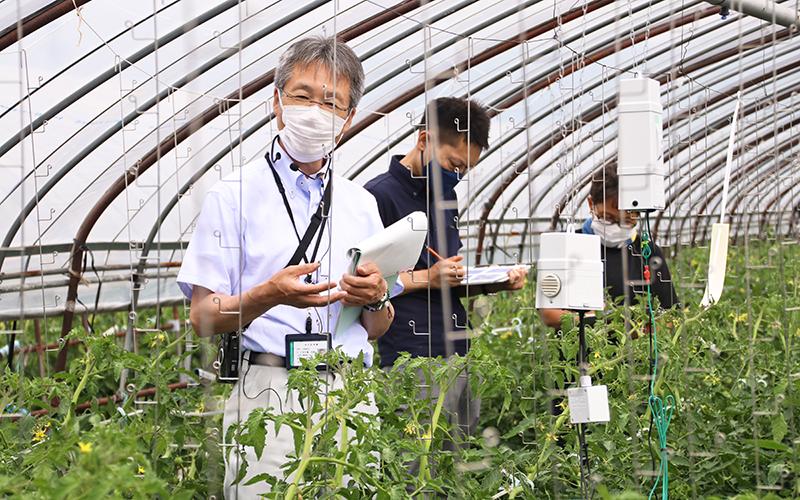 アグリベーシックセミナーでは、ICT機器導入済みのトマト農園で、担当の信金職員が活用方法を説明(6月29日、伊達市)